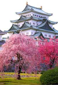 Nagoya hotels, resorts & accommodations
