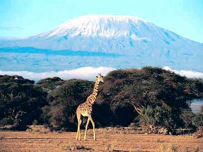 Tanzania hotels, resorts & accommodations