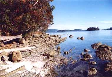Thetis Island hotels, resorts & accommodations