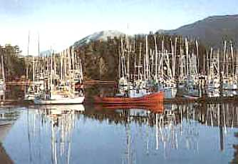 Ucluelet British Columbia Travel And Tourism Information